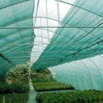 vegetable-green-shade-netting